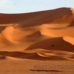 Gargantas del Todra y las dunas de Merzouga
