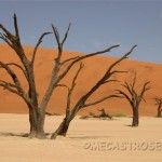 Dead Vleid y la duna mas alta del mundo.