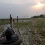 Delta del Okavango. El delta mas grande del mundo.