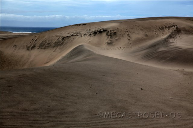 P.N. de la dunas de Sigatoka