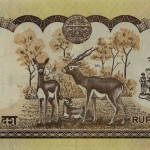 Rupias Nepalesas
