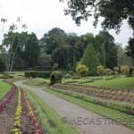 Jardín botánico de Peradeniya