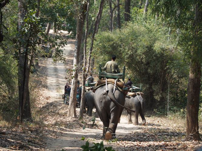 Mandla, State of Madhya Pradesh, India