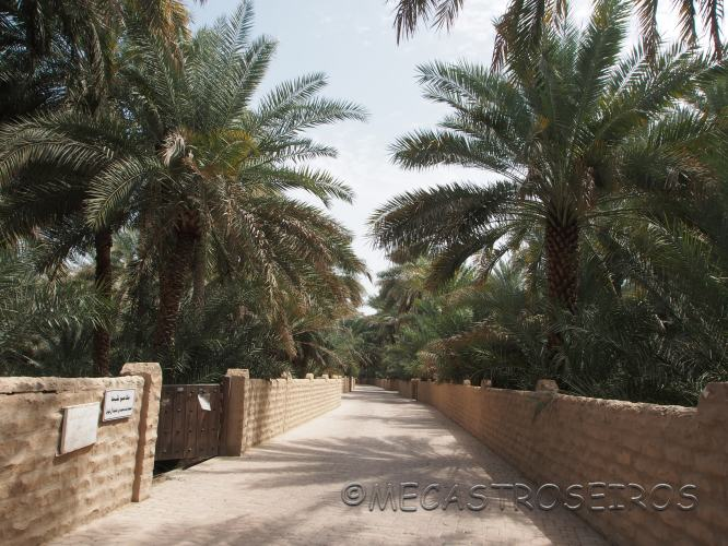 Al Ain, Ab? Z?aby, United Arab Emirates