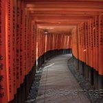 Santuario Fushimi Inari