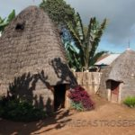 Los Dorze y sus casas elefante
